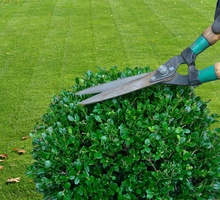 Landschaps- en tuinarchitect Massagé Pieter